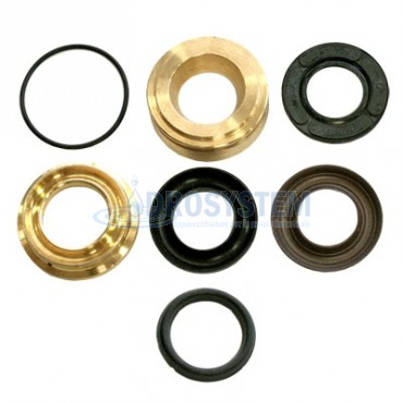 KIT 28 Revisione Pistone  D.20 INTERPUMP IP 34.0028.01