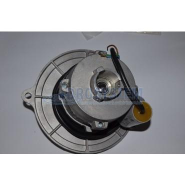 Motore Bruciatore 100W - 220V 50Hz LAVOR 3.300.0003